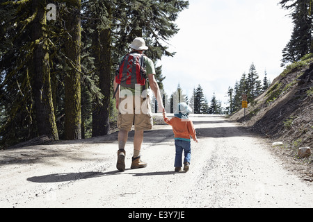 Rear view of father and daughter, holding hands walking through forest in Oregon, USA - Stock Image