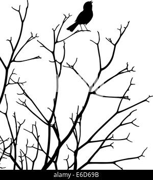 Editable vector silhouette of a bird singing at the top of a bare tree - Stock-Bilder