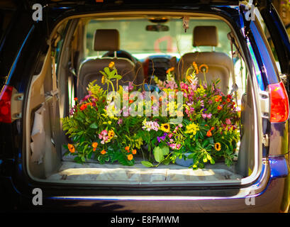 Flowers in car trunk - Stock Image