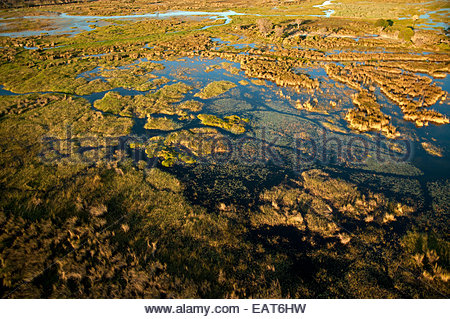 An aerial view of the Okavango Delta at the Moremi Game Reserve. - Stock-Bilder