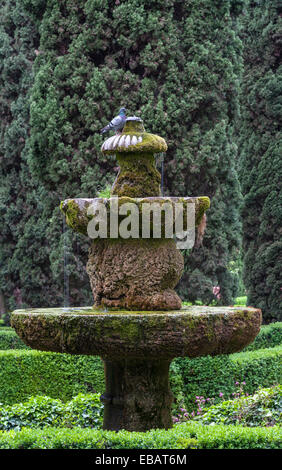 Marvelous Ancient Gardens Stock Photos  Ancient Gardens Stock Images  Alamy With Luxury The Renaissance Gardens Of The Giardino Giusti Verona Italy Fountain  Against A Background With Appealing Tavira Gardens Also Corner Garden Summer Houses In Addition Haskins Garden Centre Snowhill And Sofra Restaurant Covent Garden As Well As Garden Gazebo Additionally Gumtree Bournemouth Home And Garden From Alamycom With   Luxury Ancient Gardens Stock Photos  Ancient Gardens Stock Images  Alamy With Appealing The Renaissance Gardens Of The Giardino Giusti Verona Italy Fountain  Against A Background And Marvelous Tavira Gardens Also Corner Garden Summer Houses In Addition Haskins Garden Centre Snowhill From Alamycom