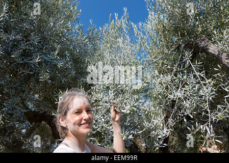 Spain, Catalonia, Tarragona, Tivissa, Portrait of female farmer with organic olives - Stock Image