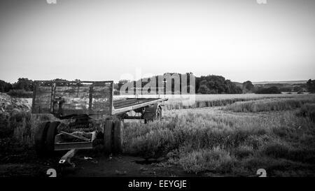 Old farm trailer in a field in summer - Stock-Bilder