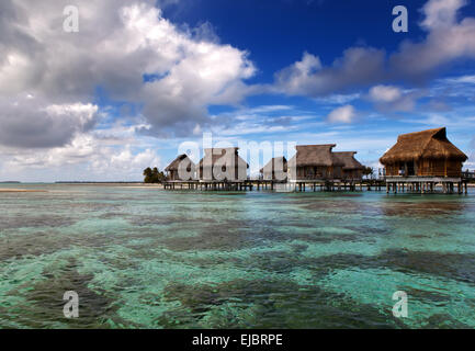 sea water- tropical paradise, Maldives - Stock Image