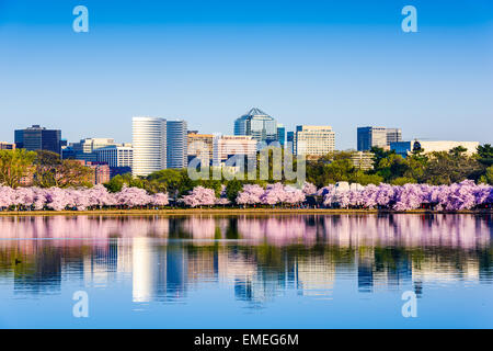 Washington, D.C. at the Tidal Basin during cherry blossom season with the Rosslyn business distict citycape. - Stock Image
