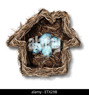 Home insurance concept and family security symbol as a bird nest shaped as a house with a group of fragile eggs - Stock Image