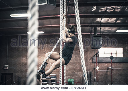 Young woman climbing rope in gym - Stock-Bilder