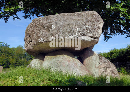 The Grønnesse Dolmen Karlsstenen (Karl's stone - Neolithic) in the Grønnesse Woods abt.4 km east of - Stock Image