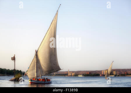 sailing a felucca on the Nile in sunset near Aswan, Egypt, Africa - Stock Image
