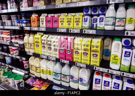 Cape Town South Africa African City Centre center Adderley Street grocery store supermarket shelves dairy case milk - Stock Image
