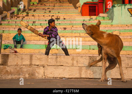 An Indian boy plays cricket on a Ganges River Ghat while a dog scratches and appears to be watching the play in - Stock Image