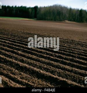 agriculture color image farmland field forest landscape mud nature Scandinavia soil spring square Sweden - Stock-Bilder