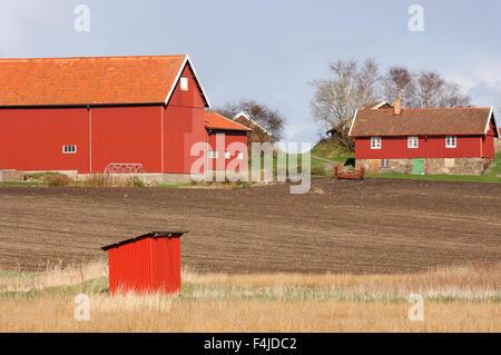 agriculture color image farm horizontal Molndal no people outdoors Scandinavia Sweden Vastergotland - Stock-Bilder