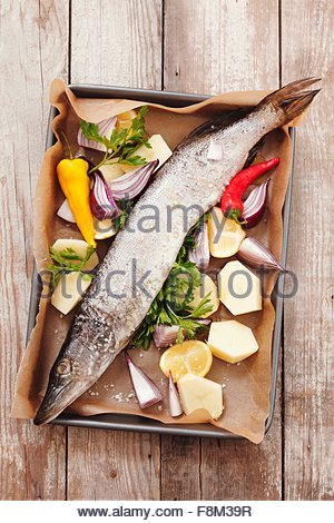 Hake with vegetables, lemons and parsley on a baking tray - Stock Image