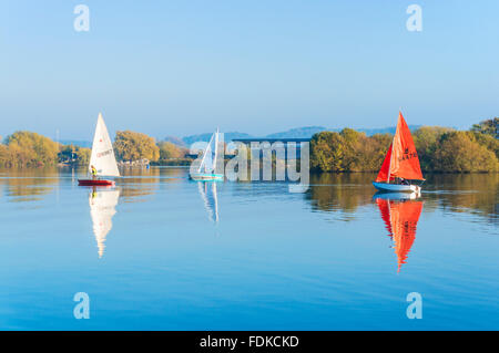 Yachts sailing around the flooded gravel pits at Attenborough nature reserve Nottingham Nottinghamshire England - Stock Image