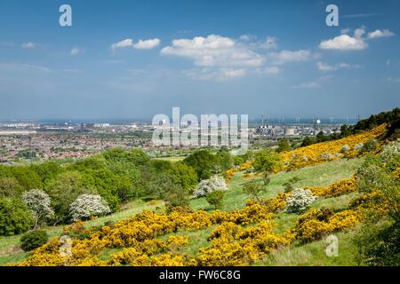 Tees Industry from Eston Hills, Cleveland, England - Stock-Bilder