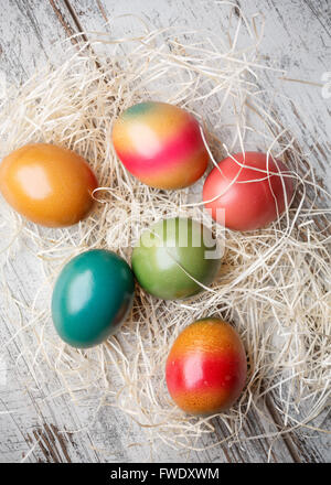 Colorful easter eggs on straw - Stock Image