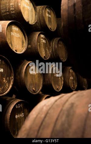 Wine Vault Stock Photos Amp Wine Vault Stock Images Alamy