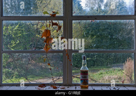 Nature Slowly Reclaims The Interior Of Linford Park Nursing Home Hampshire UK
