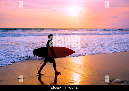 Surfer with surfboard walking on the sandy beach at sunset. Bali island, Indonesia - Stock-Bilder