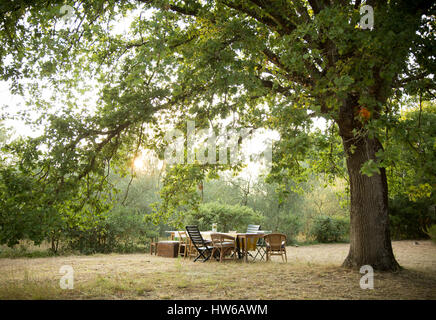 Outdoor dining in Italy - Stock Image