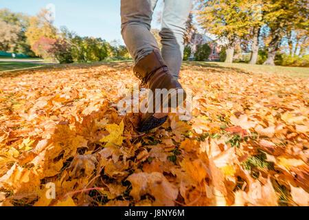 Man in jeans walking in fallen autumn leaves - Stock-Bilder