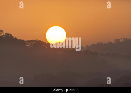 Sunrise in Soberania National Park, Republic of Panama. - Stock-Bilder