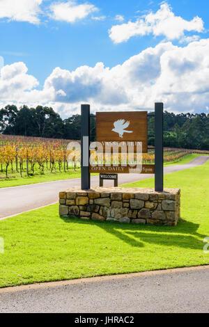 Australian Vines Stock Photos Amp Australian Vines Stock