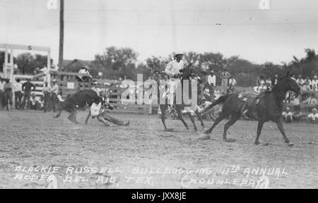 Cowboy Blackie Russell (front left) steer wrestles in the rodeo arena of the eleventh annual Rodeo Del Rio, Texas, - Stock Image