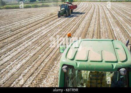 Badajoz, Spain - August 12, 2017:  Tractor pulling an onion harvester. Badajoz Guadiana meadows, Spain - Stock Image