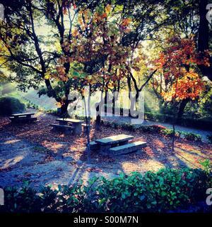 Romantic place autumn fairytale, Guimaraes, Portugal - Stock-Bilder