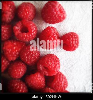 Red Raspberries - Stock Image