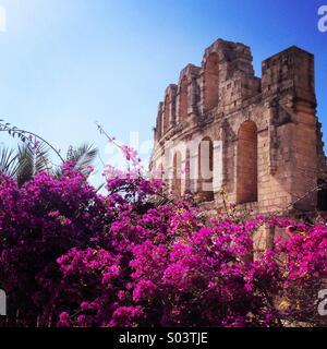 Roman amphitheatre - Stock Image