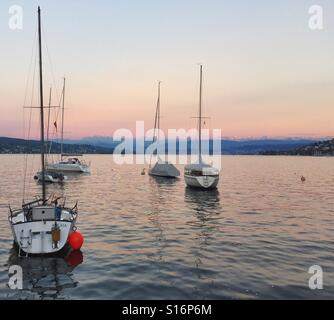 ships at sunset on the lake zurich - Stock Image