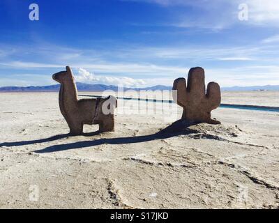 Salt exploitation, Salinas Grandes, north west of Argentina. Salt llama and cactus - Stock-Bilder