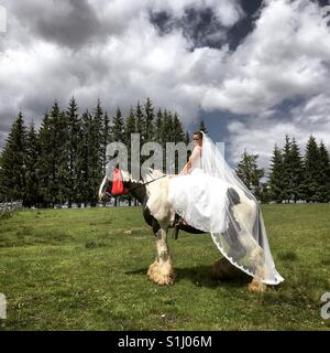Bride and horse - Stock Image