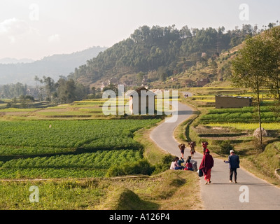 rural valley divorced singles Divorced dating india  in india has improved considerably over the years but the plight of this gender is still like the primitive age in the rural areas.