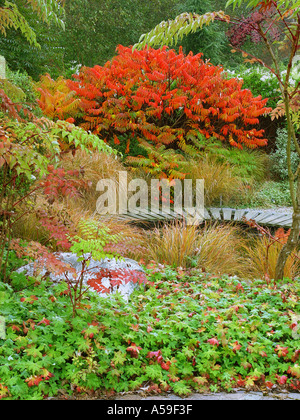 Autumn Garden View Broadview Gardens Kent   Stock Image