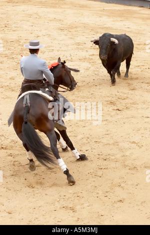 Horse Bullfighter (u0027rejoneadoru0027) Faces The Bull During 2005 Feria De San  Isidro