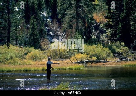 Bishop creek stock photos bishop creek stock images for Bishop creek fishing