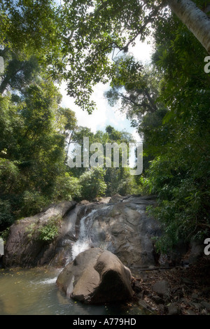 Phang Stock Photos & Phang Stock Images - Page 7 - Alamy