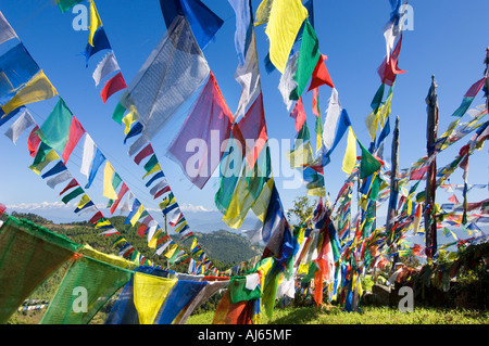 valley buddhist dating site The site itself has stood as a hallmark of faith and harmony for centuries the glory of kathmandu valley is said  swayambhunath is one of the holiest buddhist.