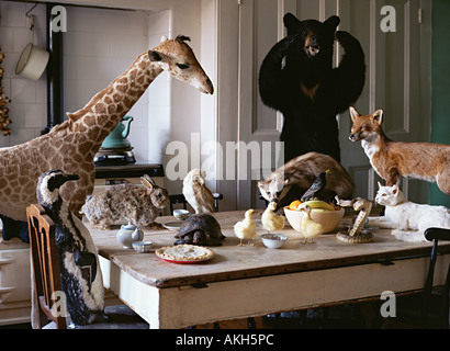 dead-animals-at-the-kitchen-table-akh5pc