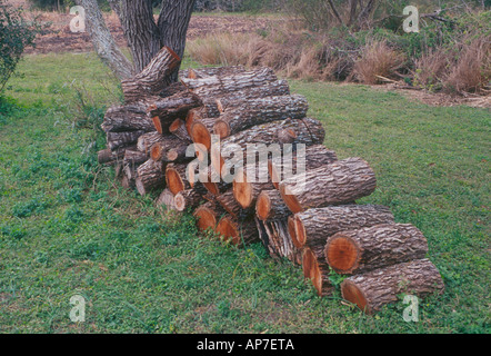 Image Result For How To Stack Firewood In Fireplacea