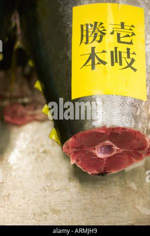 Tuna fishing stock photos tuna fishing stock images alamy for Sushi grade fish market
