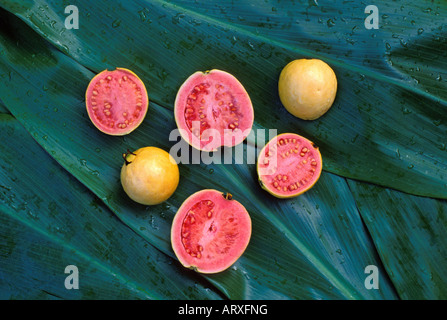 how to cut up a guava