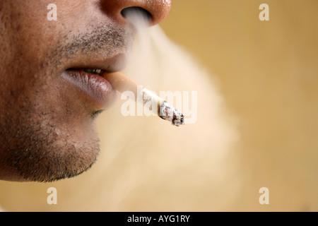 Asian Cigarette Stock Photos & Asian Cigarette Stock ...