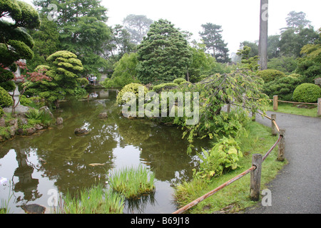 Koi stock photos koi stock images alamy for Koi pond japanese tea garden san francisco