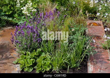 Fascinating Pershore Stock Photos  Pershore Stock Images  Alamy With Engaging Awarded Gold The Astrology Garden Malvern Spring Gardening Show   Garden Designed By Jake With Awesome Sophies Covent Garden Also Garden Claw Weeder In Addition Wavertree Garden Suburb And Aynsley Cottage Garden Vase As Well As Garden Allotment Ideas Additionally Bbc Gardeners World Show From Alamycom With   Engaging Pershore Stock Photos  Pershore Stock Images  Alamy With Awesome Awarded Gold The Astrology Garden Malvern Spring Gardening Show   Garden Designed By Jake And Fascinating Sophies Covent Garden Also Garden Claw Weeder In Addition Wavertree Garden Suburb From Alamycom