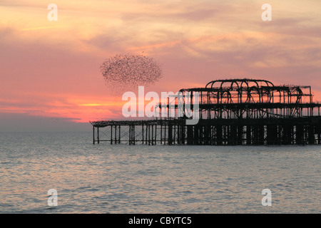 Flying Into The Sunset Stock Photos Flying Into The Sunset Stock Images Page 3 Alamy